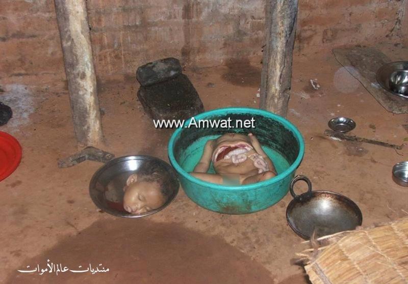 une mere qui veux manger son enfant 1176_800x600-14f479c