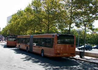 Numérotation et immatriculation des bus - Page 2 100_0172-1369848